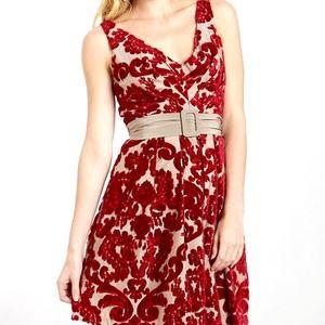 Eva Franco Alexa Dress in Velvet Floral